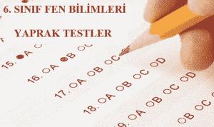 6. Sınıf Fen Bilimleri Yaprak Testler