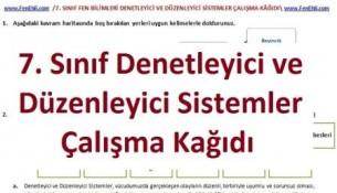 7. Sınıf Denetleyici ve Düzenleyici Sistemler Çalışma Kağıdı