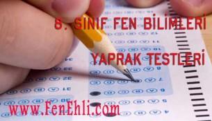 8. Sınıf Fen Bilimleri Yaprak Testleri