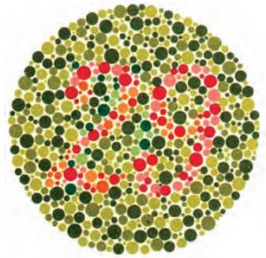 Renk Körlüğünün Belirlenmesinde Kullanılan Test Levhası
