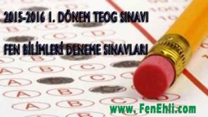 1. Dönem TEOGS Fen Bilimleri Deneme Sınavları