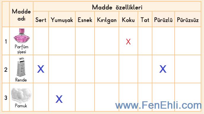 3. Sınıf Fen Bilimleri İpekyolu Yayınları 51. Sayfa Cevapları