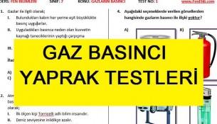 Gaz Basıncı Yaprak Testleri