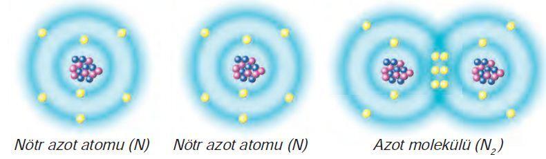Kovalent Bağ-Azot Molekülü Oluşumu