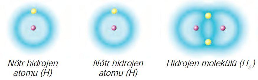 Kovalent Bağ-Hidrojen Molekülü Oluşumu