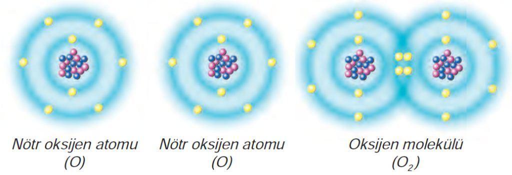 Kovalent Bağ-Oksijen Molekülü Oluşumu