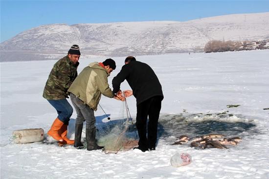 Göllerdeki Sular Üstten Donar Sudaki Hayat Devam Eder