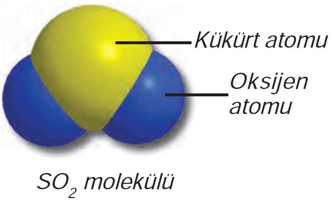 Kükürt Dioksit Bileşiğinin Molekül Modeli