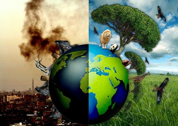 Kirli Çevre-Temiz Çevre