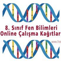 8. Sınıf Fen Bilimleri Online Çalışma Kağıtları
